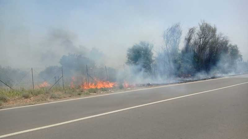 Incendio SS113
