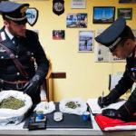 Trovato con mezzo chilo di marijuana in casa: in manette un uomo della provincia di Palermo