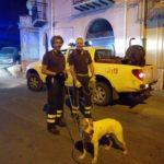 Cane intrappolato nel fiume Barratina: lo salvano i vigili del fuoco