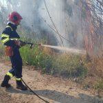 Incendio a Termini Imerese: paura in contrada Masche FOTO