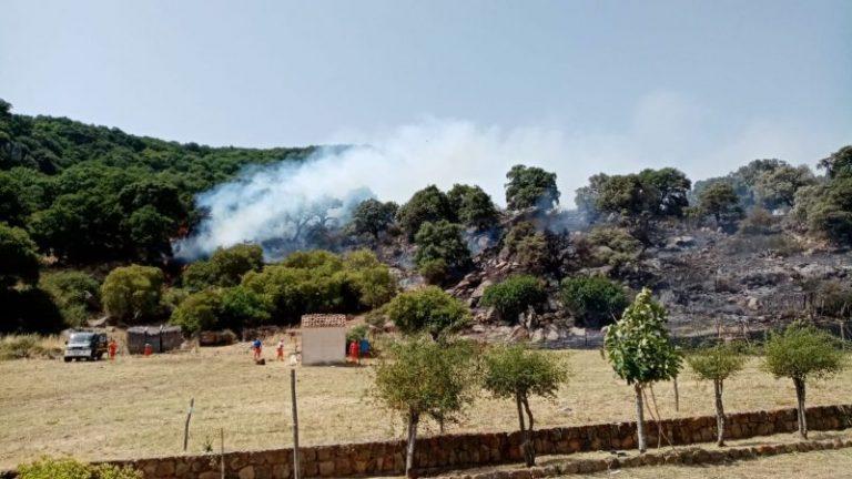Emergenza incendi in provincia di Palermo: brucia la riserva naturale orientata Granza Favara FOTO